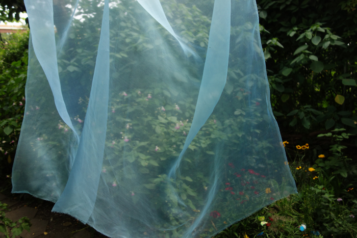 organza silk dyed with fresh indigo leaves